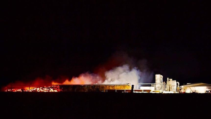 A fire at night at an almond processing facility.