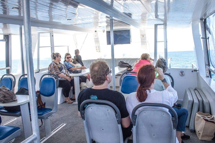 passengers sitting on a whale watching vessel