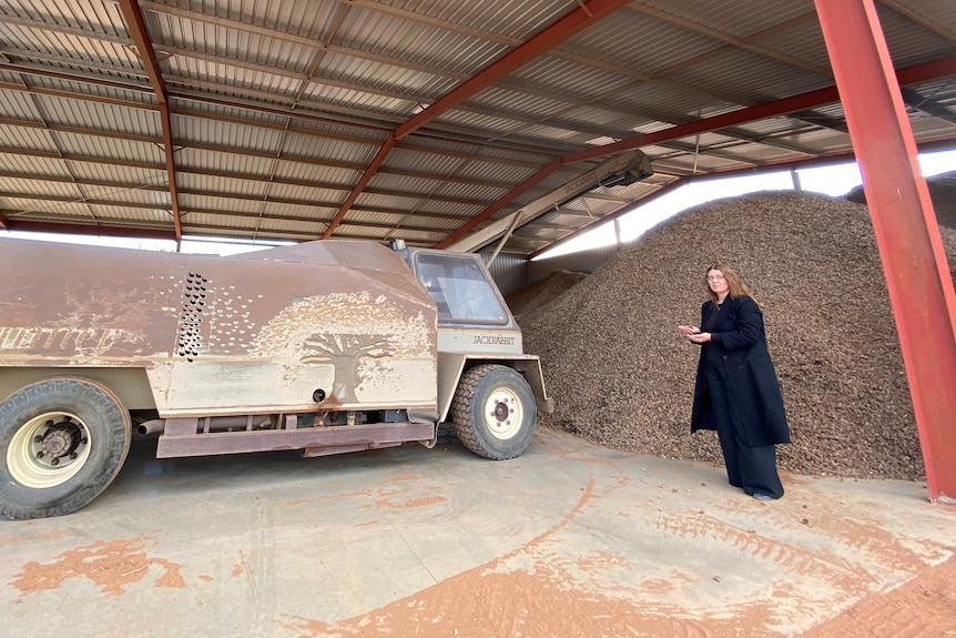 A woman stands in front of a huge pile of almonds.