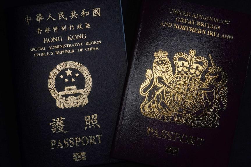 香港政府呼吁14国政府不要接受BNO证件。