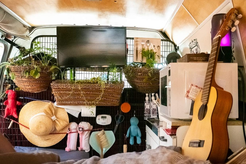 Plants and a television hang on the wall of a campervan.