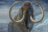 Painting of a woolly mammoth