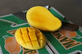 The Hunyh family sells its honey mangoes to markets in Sydney and Melbourne.