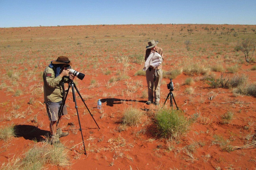 Michael Batley in the desert photographing bees