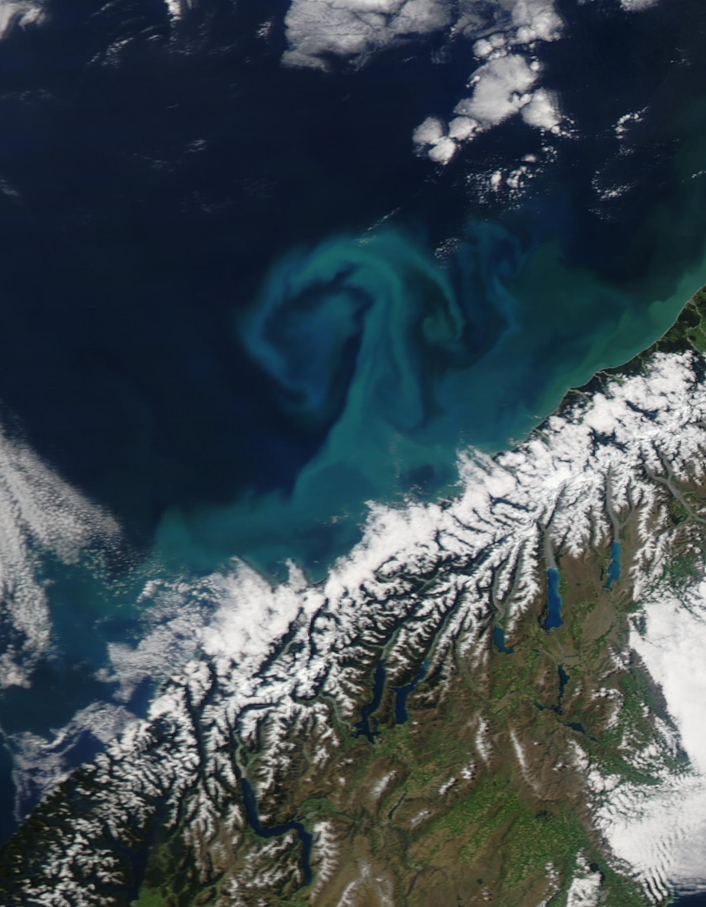 Algal bloom off New Zealand coast