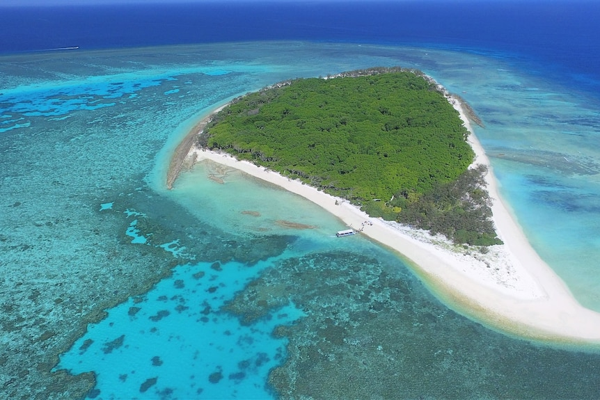 Aerial view of the small but beautiful Lady Musgrave Island, ringed by coral in shallows and deep blue sea