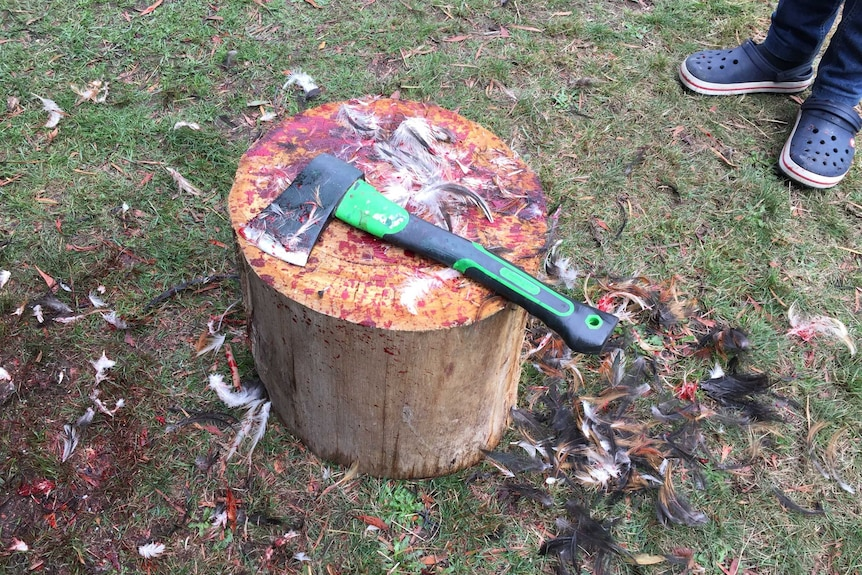 An axe rests on a bloody chopping block surrounded by feathers.