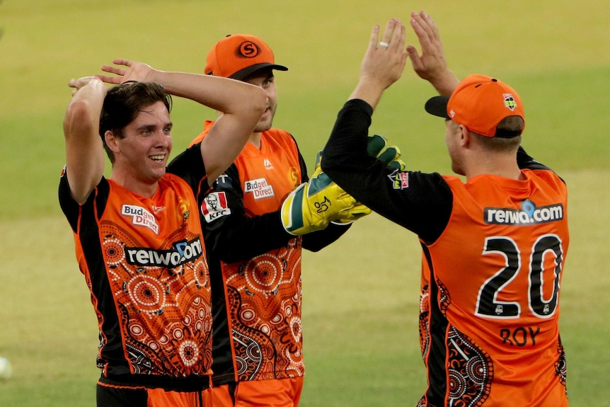 Perth Scorchers BBL players celebrate a wicket against Sydney Thunder in Perth.