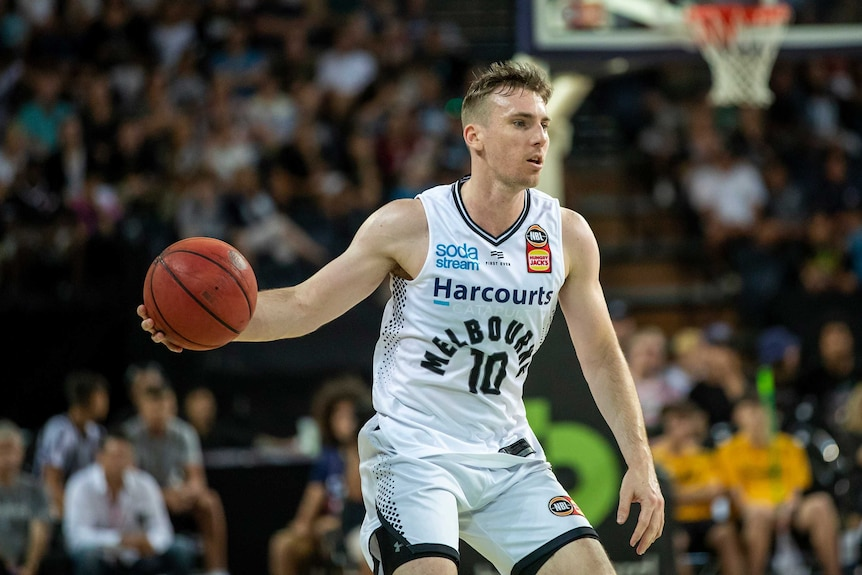 Melbourne United NBL players Mitch McCarron and Jo Lual-Acui return  positive coronavirus tests - ABC News