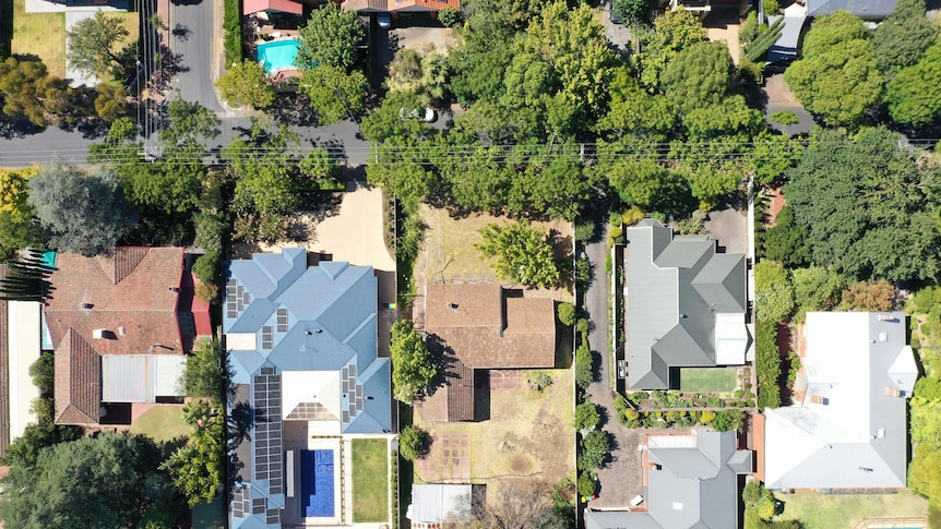 An aerial view of a leafy street with large housing blocks