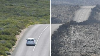 A composite image of a car traveling on a road with green grass on the side, with another photo showing burnt bushland.