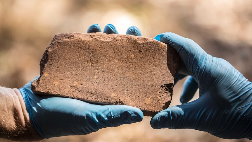 The archaeologists uncovered thousands of artefacts. (Photo: Supplied)