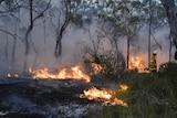 Firefighters battle the Bilpin bushfire in New South Wales.