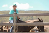 A woman in a polo shirt, baseball cap and sunglasses sits on a horse by a fence, smiling.