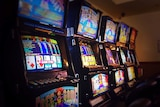 a line of poker machines