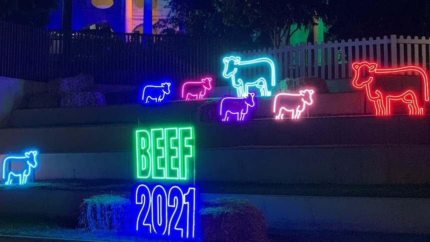 Colourful neon lights depicting cattle and with a Beef 2021 sign