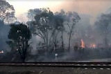 A passenger films out of a train window, showing fires burning in bushland right next to the tracks.