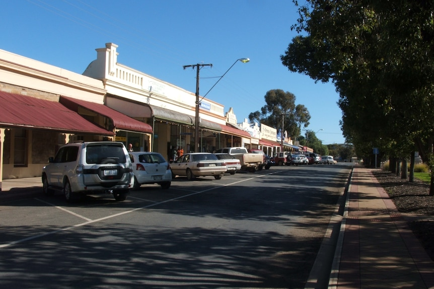 A main street of a small town, lined with trees down the middle.