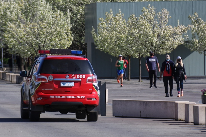 A red police car parked beside flowering trees.