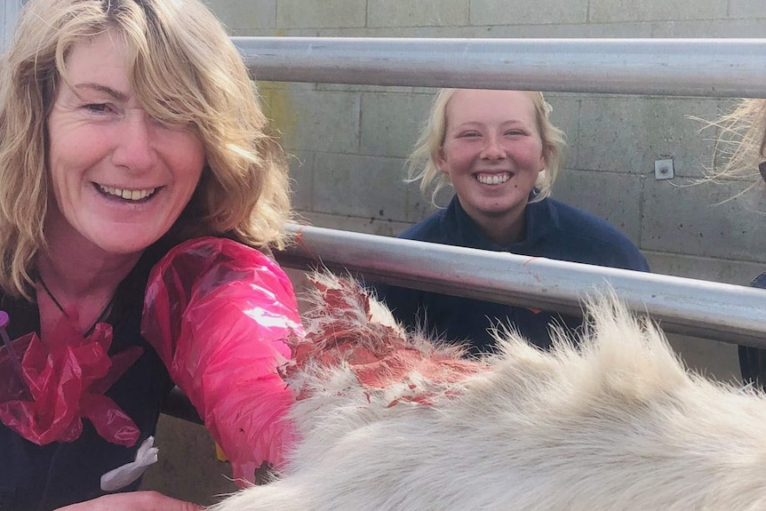 Two women smile on either side of a metal fence with a cow's painted tail, and hide, in the foreground.