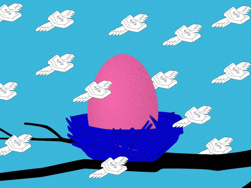 An illustration of a pink egg in a blue nest with flying money notes with dollar signs on them