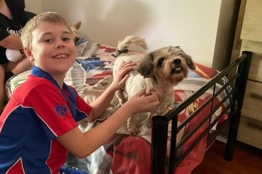 A boy and his dog on a bed.