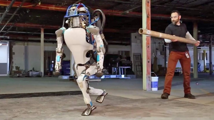 The Atlas robot is pushed over by a Boston Dynamics employee with a metal pipe