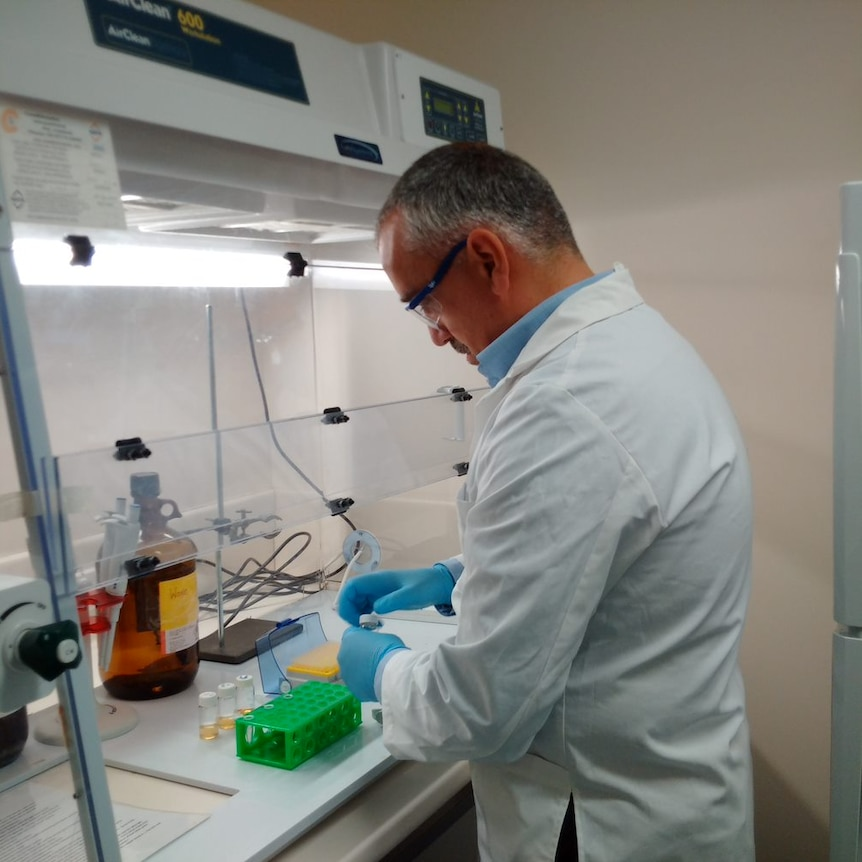 A man is standing in a lab with a white coat on and glasses looking at some test tubes.