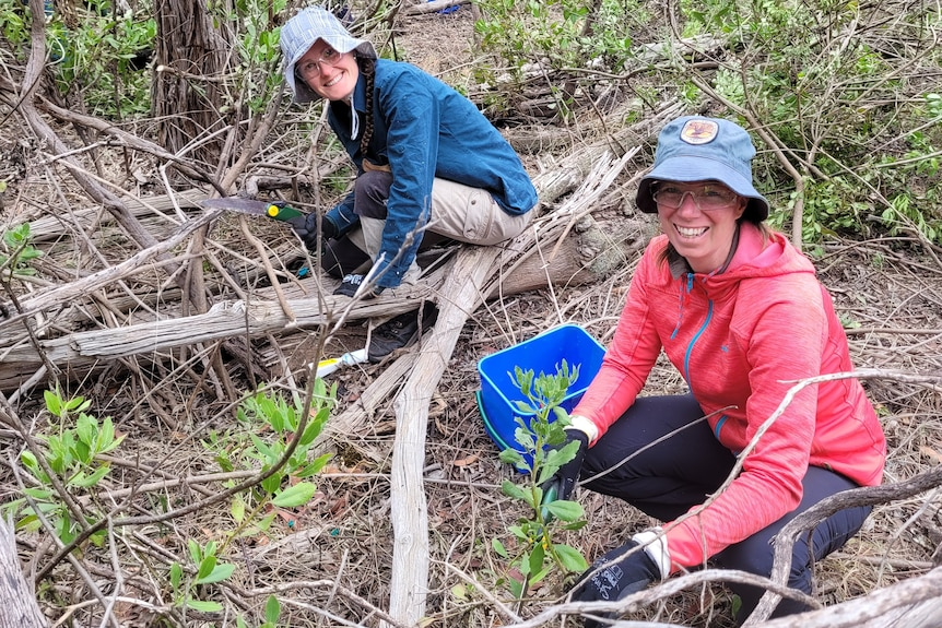 Two young women in hats squat in bushland with trees around them, smiling at the camera