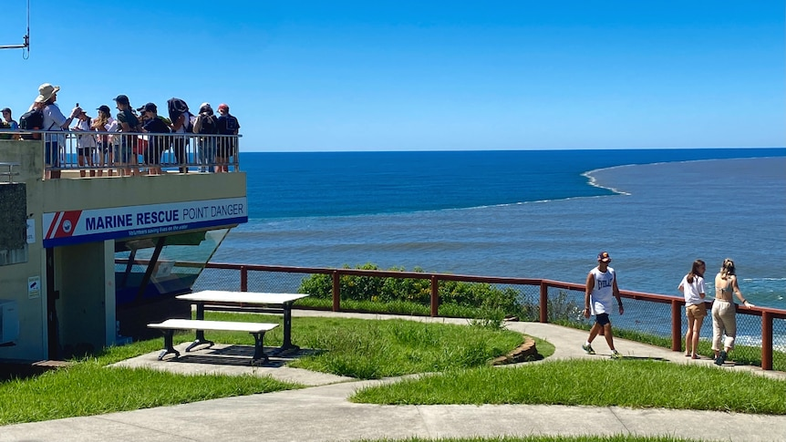 People overlooking the ocean and the water closest to shore is brown while water further out is blue