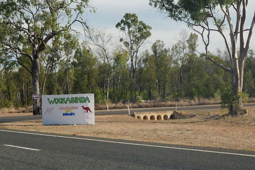Light eucalyptus forest surrounds a white sign, which has the words Woorabinda kangaroo sit down