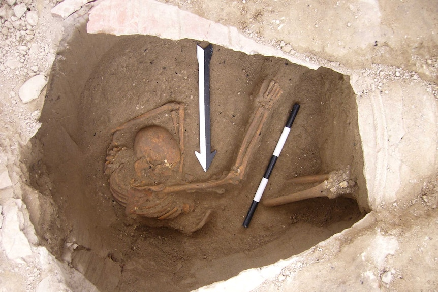 Skeleton of ancient person who lived in the Near East