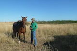 A man in a green shirt beside a horse in a paddock