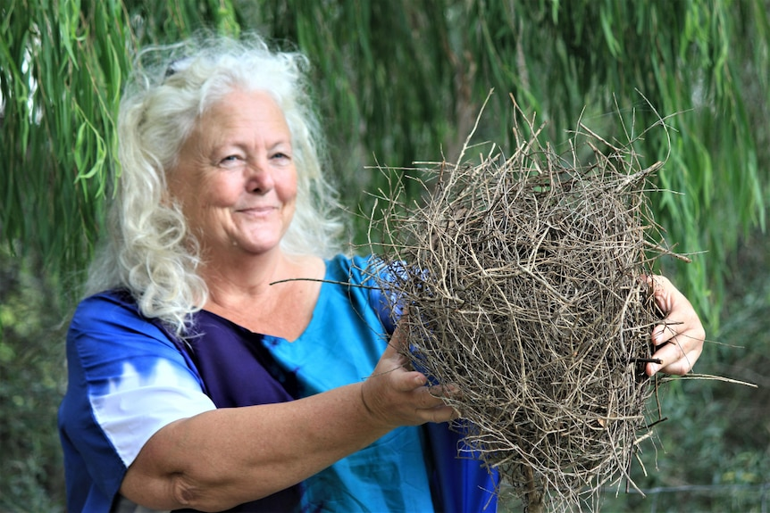 A woman is standing in her backyard holding what looks like a nest, but is a possum drey