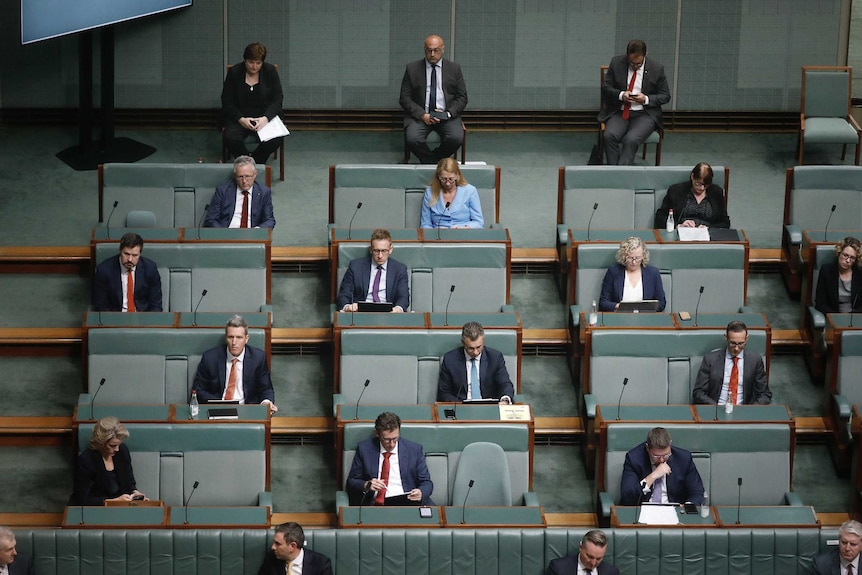 Labor politicians sit with large gaps between them in the green House of Representatives