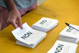 """A man holds a ballot paper reading """"non"""" in New Caledonia's independence referendum."""