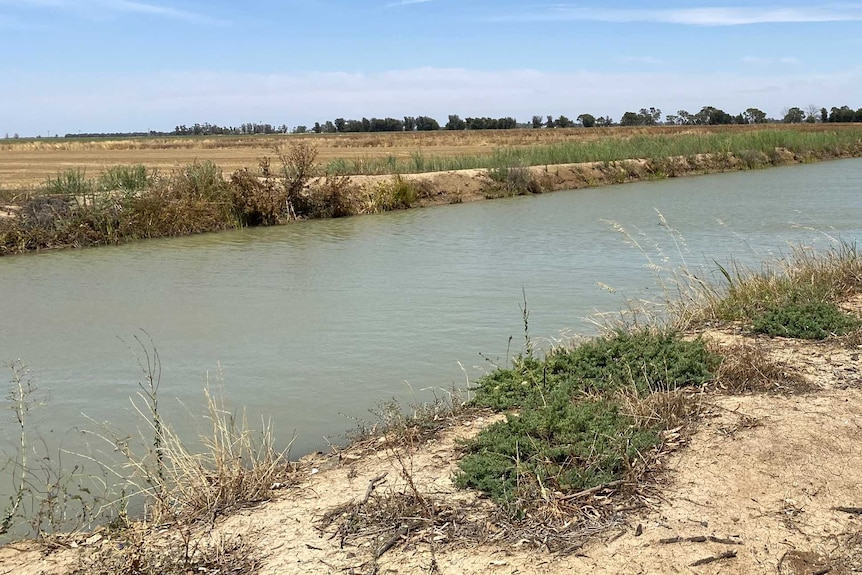 A channel of water in the foreground, a brown paddock in the background and blue sky.
