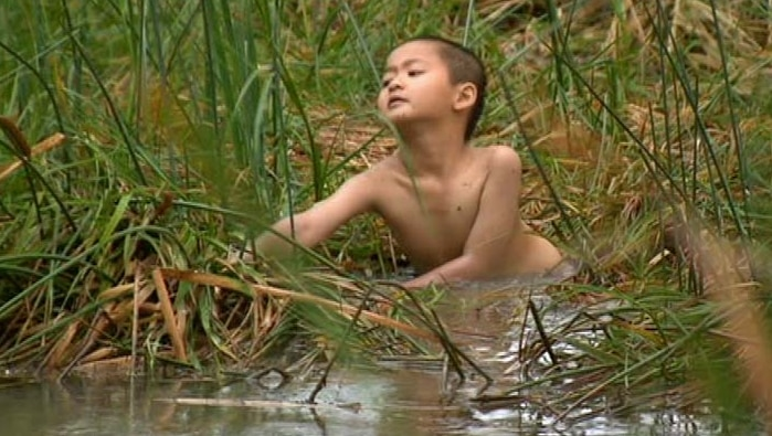 Missing boy found at the edge of a creek.