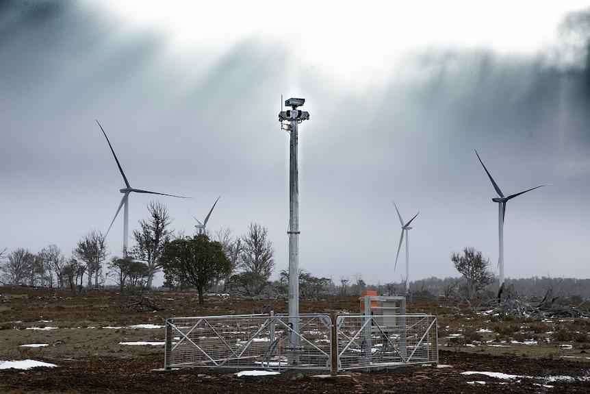 The IdentiFlight system at Cattle Hill Wind Farm