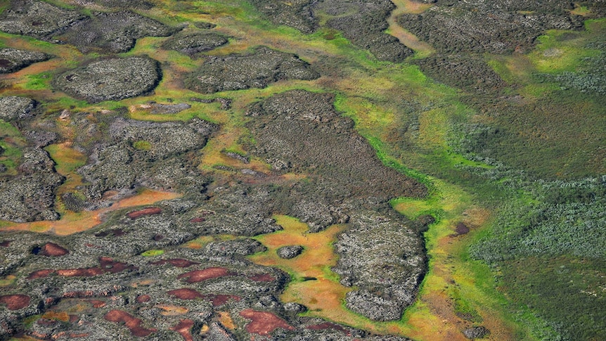 Aerial view of permafrost peatlands in the Arctic