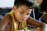 A young boy concentrates on his school work.