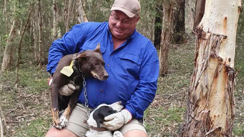 Man in blue top holds his brown pet dog in his arm and has a second black and white dog between his legs.