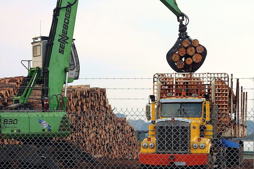 Logs and a truck at an export port