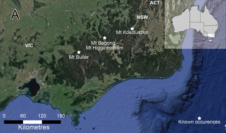A map showing the three locations of the possum in the Victorian and NSW highlands.
