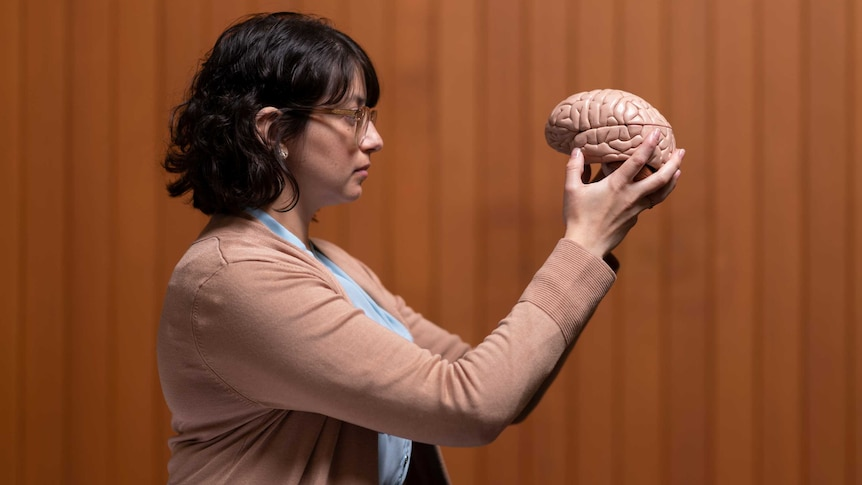 Daniela holds up a model of the brain, staring at it.