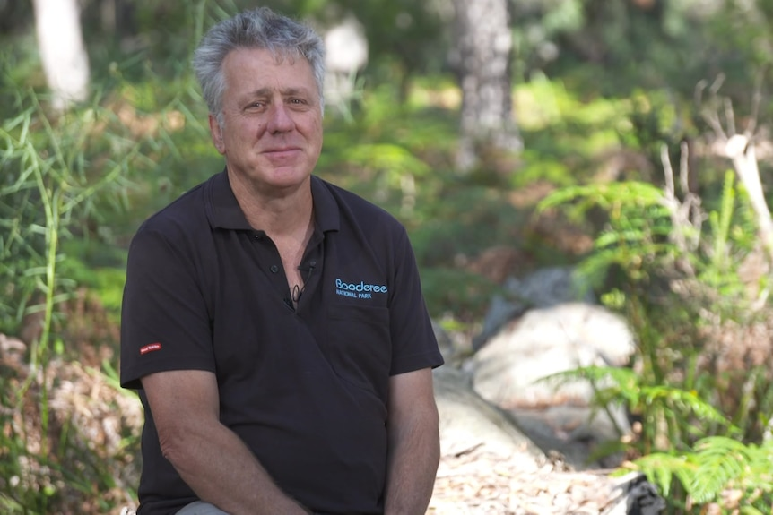 A man with grey hair wearing a black shirt sits in a national park surrounded by ferns, trees and boulders