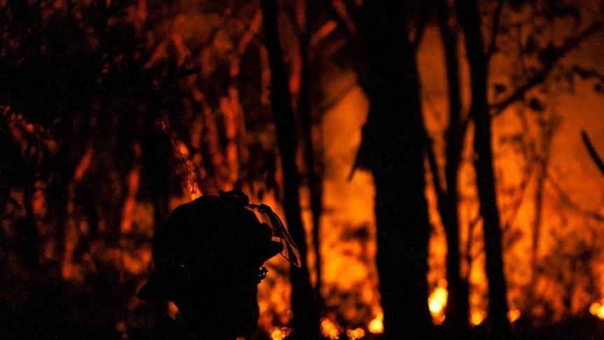 Firefighter battles NSW bushfires