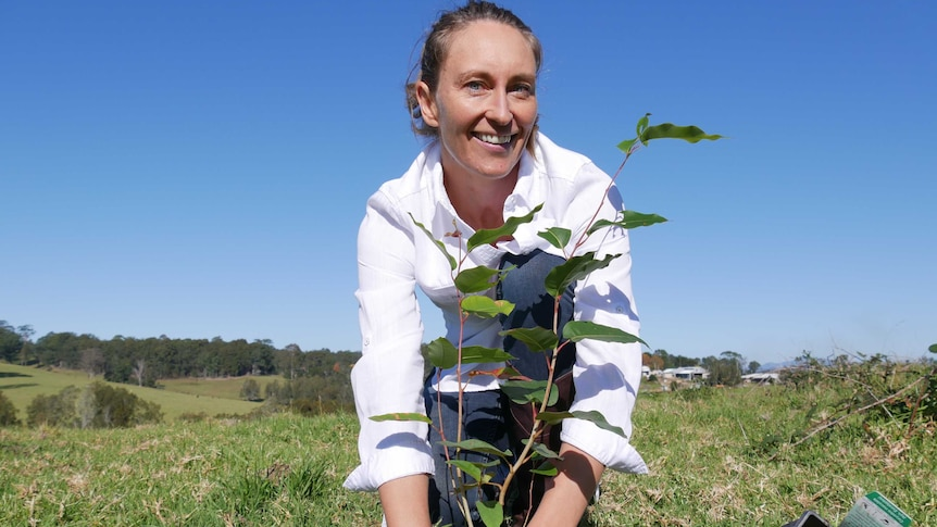 A smiling woman plants seedling