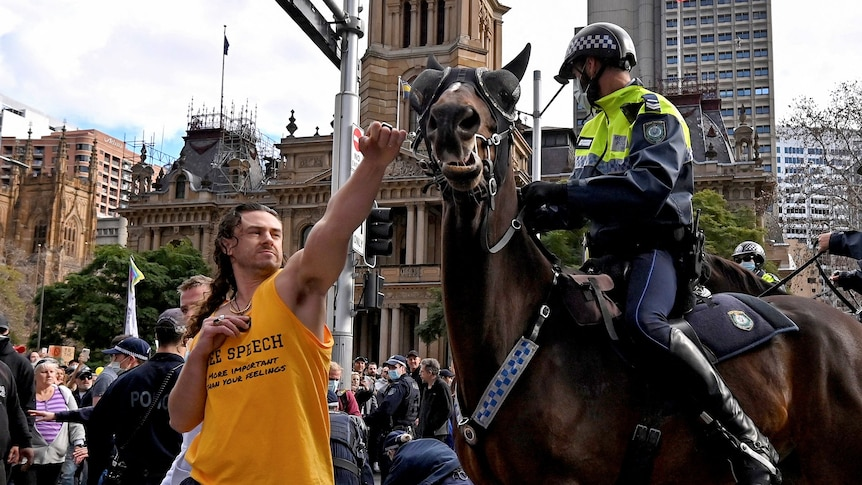 A man pushes his arm towards a horse's face among a crowd of people