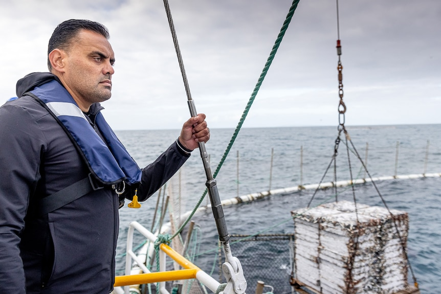 Man stands on the side of a boat looking out to sea at some tuna